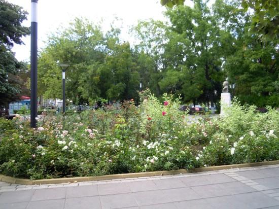 Parc Junior Botosani 1