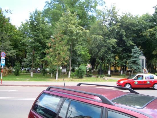 Parc Primarie Botosani 1